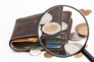 kreditupplysning, syna din ekonomi